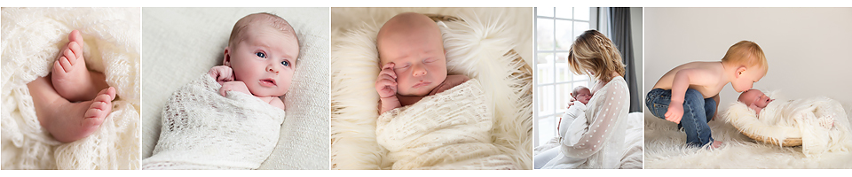 newborn photography in connecticut and western mass